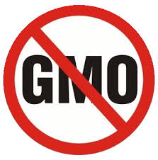 Avoiding GMO Products