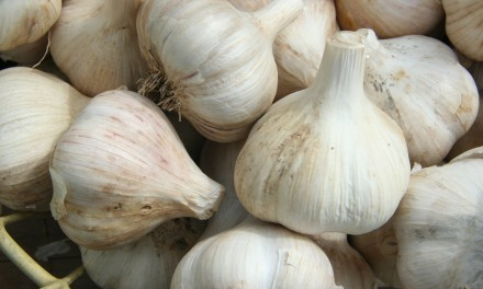 You will never think about Garlic the same again
